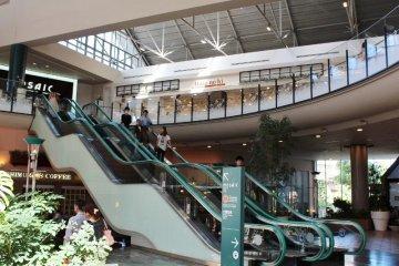Curved escalator