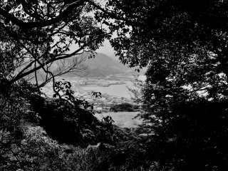 Hiking up Nokogiri Mountain in Chiba, my friend and I spied the town of Motona through these bushes. At the time, it seemed like another world to us both.