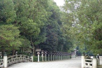 The Omote Sando approach of the shrine