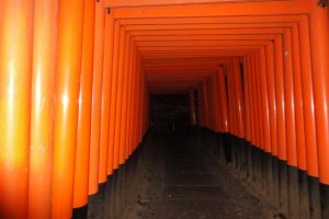 Fushimi Inari at night