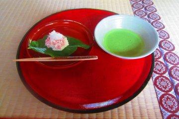 Freshly-made Matcha tea and Japanese sweets