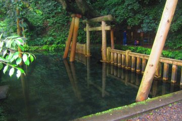 A purification pond located near a rear entrance to the shrine