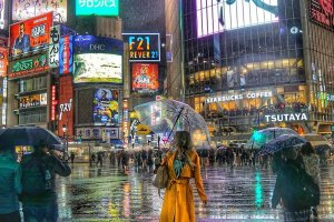 Tokyo Nightlife: Akabane and Shibuya
