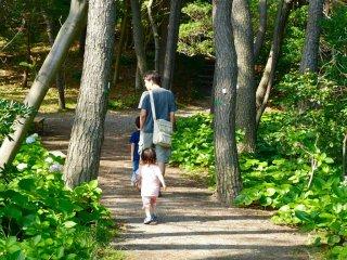 공원의 산책로