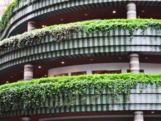 Khu trung tâm được trang trí đẹp mắt với cây xanh