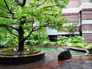 The garden creates a relaxed ambience in the shopping mall.