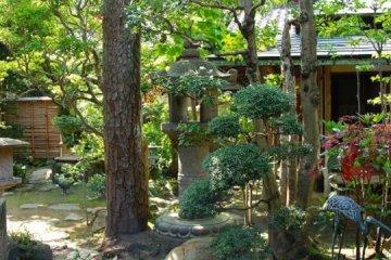 Otera Craft Shop's beautiful Japanese garden