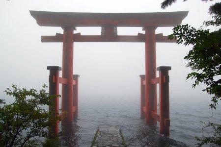 Foggy Days in Hakone