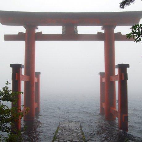 Những ngày sương mù ở Hakone