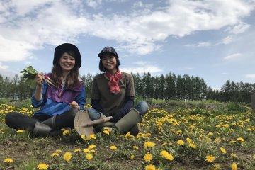 Tokachi Girls Farm