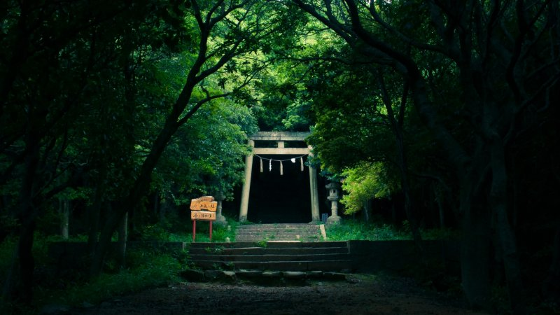 <p>The stairs to the shrine are a mystical experience.</p>