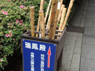Walking sticks for anyone to use