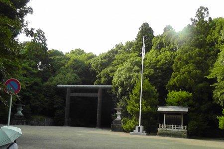 Đền trong rừng Miyazaki - phần 1