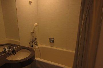 Toilet with Bathtub (Ofuro)