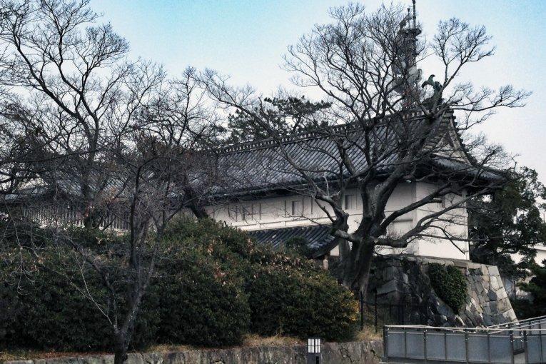 Saga Castle