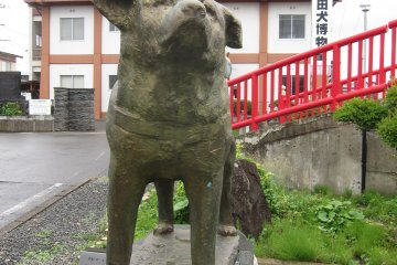 <p>Hachiko statue guarding the Akita Dog Museum</p>