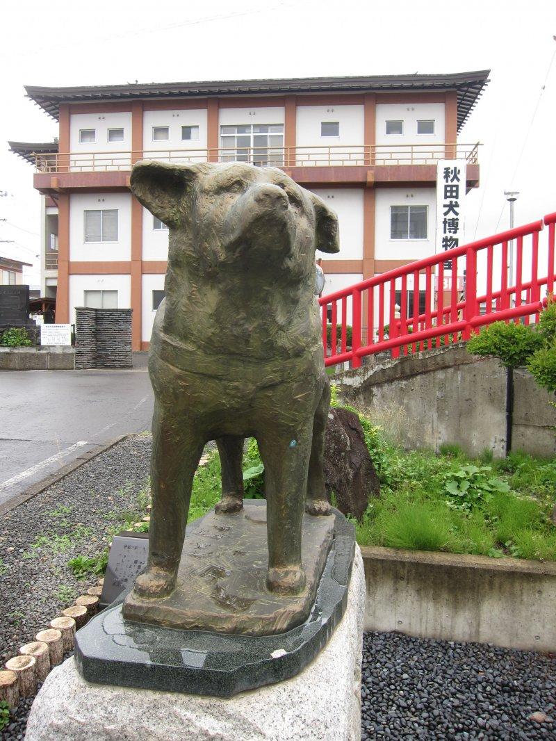 Akita Dog Museum In Odate Akita Japan Travel Japan