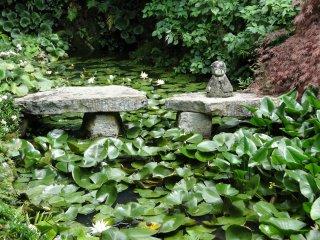연꽃들 틈에 앉아 있는 석상