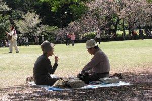 Пожилая пара на пикнике