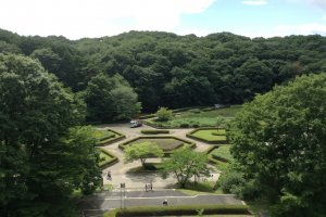The view of Dainohara Forest Park from the museum's observation deck.