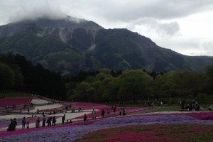 치치부시를 지키는 부코산과 꽃밭의 정경