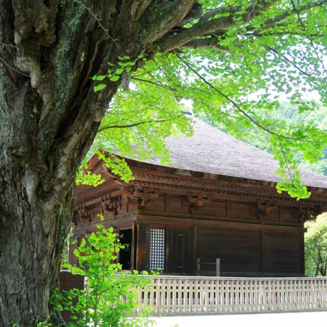Iwaki City's Shiramizu Amida-do