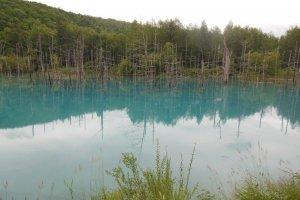 Lac bleu de Biei