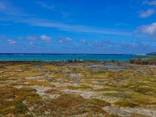 Beautiful views from Ou-jima