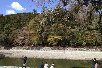 Purification at Isuzu River: Naiku