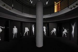 Freedom in the Dark, Benjamin Millepied