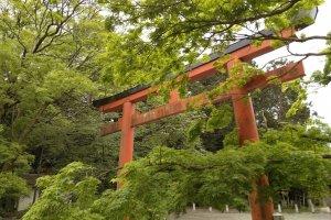 Entrance to Yoshida Shrine