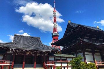 Springtime Glimpses of Zojoji