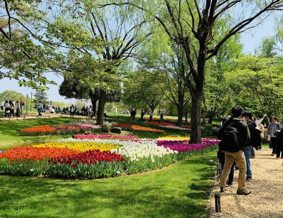 Spring Flower Festival 2019