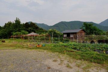 Perkebunan Deai-no-sato Kumano