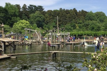 Try the zip line over the pond