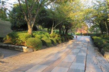 An Evening in Tsutsujigaoka Park