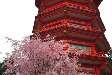 Yamaguchi Kannon