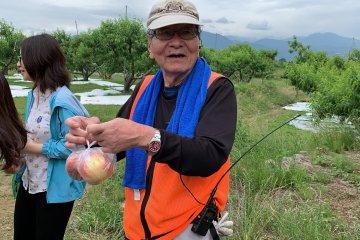 Peach Picking at Misaka Farm 'Grape House'