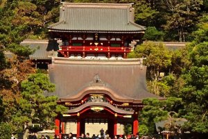 Kamakura's Tsurugaoka Hachimangu Shrine: The God that the Samurai Believed In!