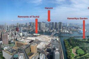 Panorama of Tokyo Bay with landmarks