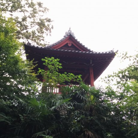 Ueno and the Bell of Time