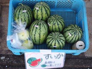 오지카 섬의 구석구석에서도 지역적으로 재배된 수박을 발견할 수 있습니다. 해변으로 가는 길에 꼭 하나 사가세요.