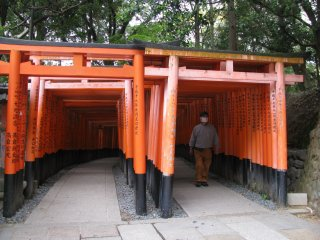 Два прохода из тории в храме Фусими Инари Тайся