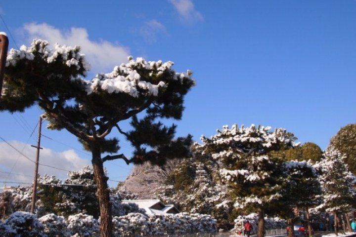 【京。遊】雪粧金閣寺。