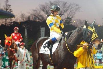 Night races at Tokyo City Keiba