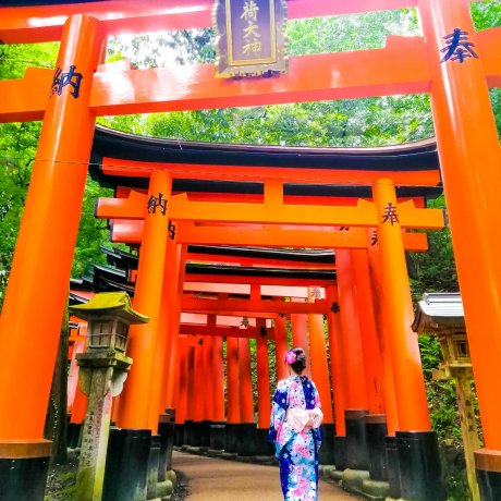 Journeying in Japan