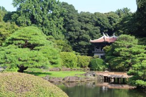 Spacious and beautiful Shinjuku Gyoen