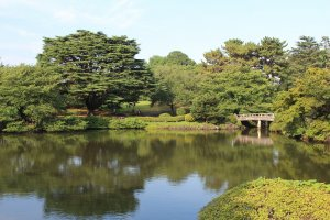 One of the peaceful views of Shinjuku Gyoen