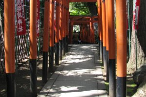 The torii of Inari shrine - the deity of rice and prosperity