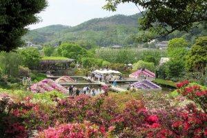 Цветочный рай в парке Асикага